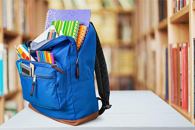 School, backpack, back